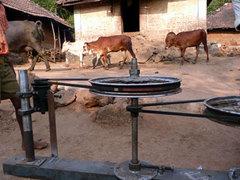 Cowpowerolpc